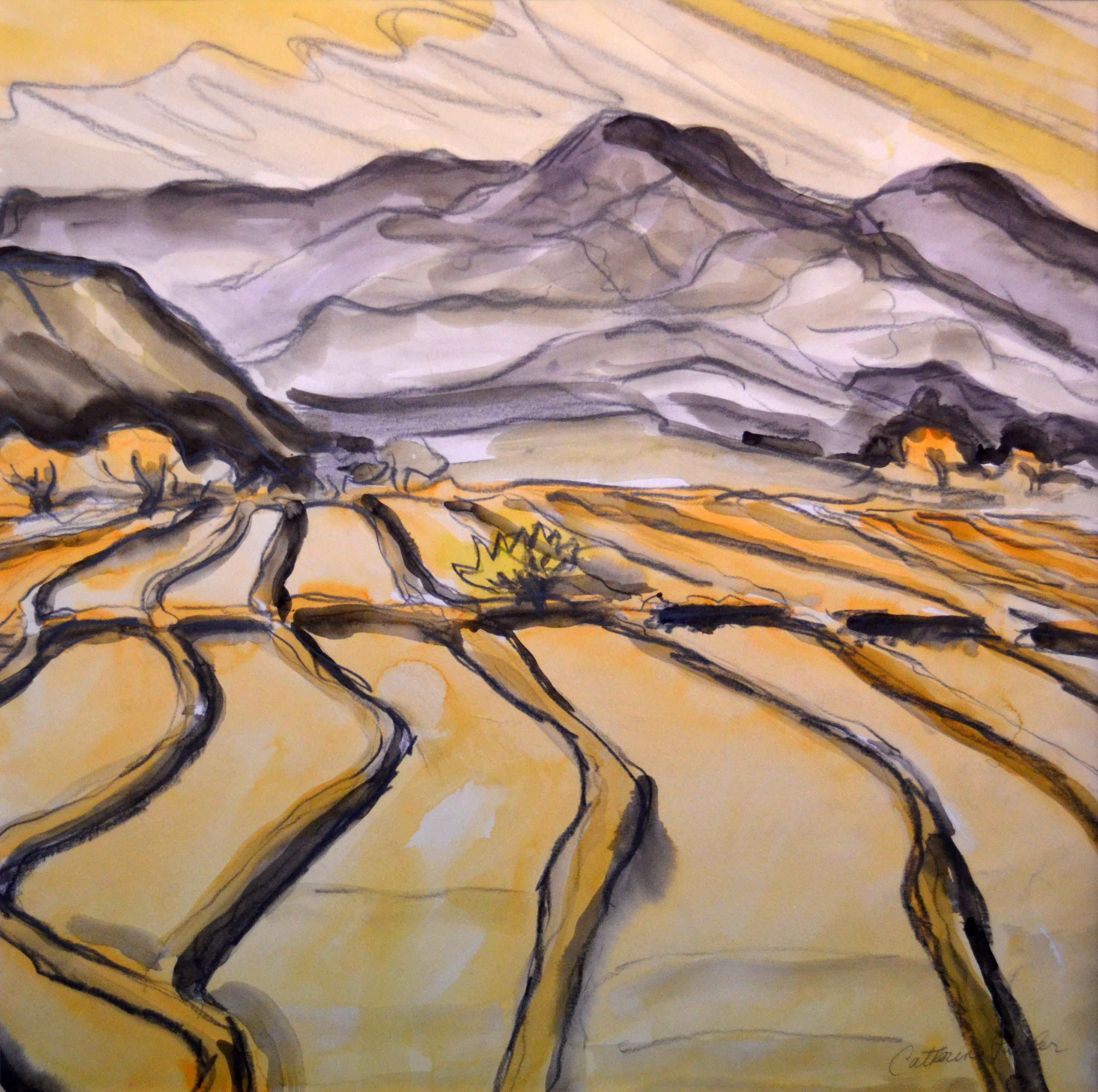 Parker - Watercolor - Desert